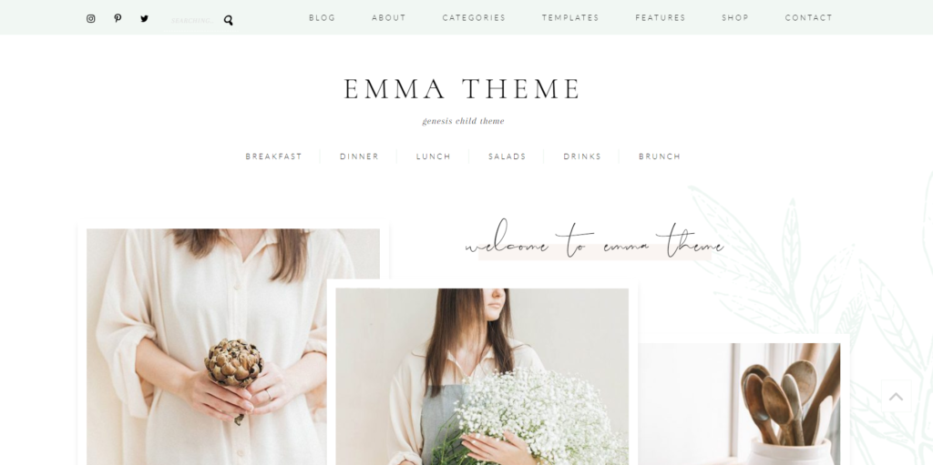 templates de wordpress para site feminino